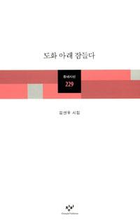 도화 아래 잠들다 - 김선우 시집 (알시16코너)