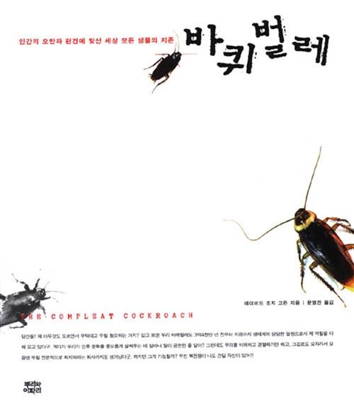 바퀴벌레 (아코너)